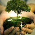 Stage Équilibrage énergétique - Bioénergie