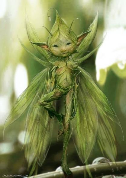 Fée, elfe, gnome,nain, farfadet