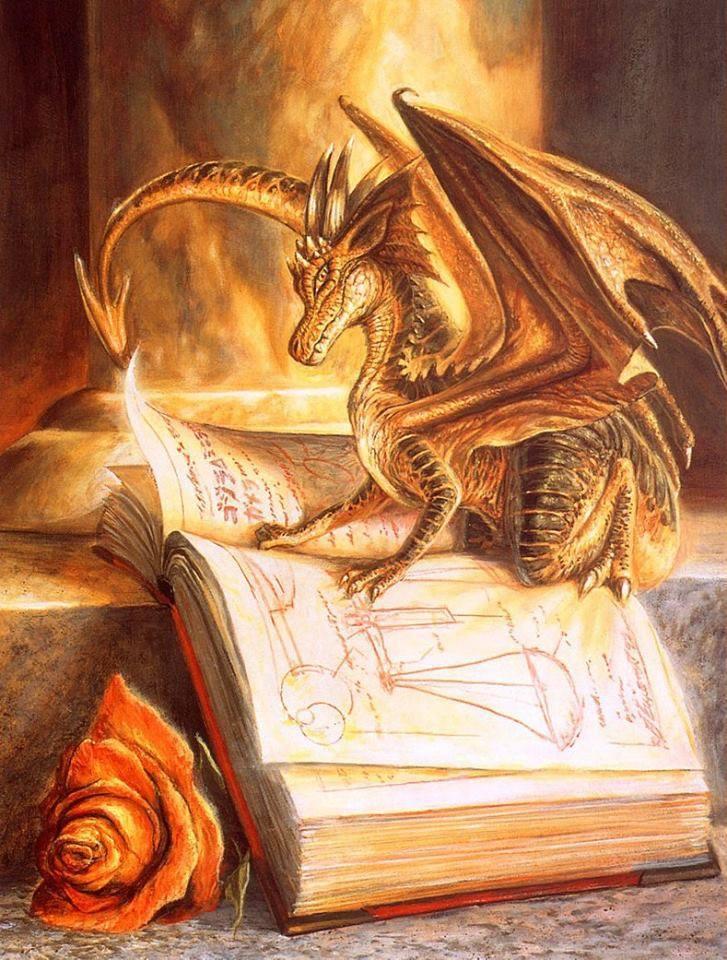 stage clair ressenti dragon